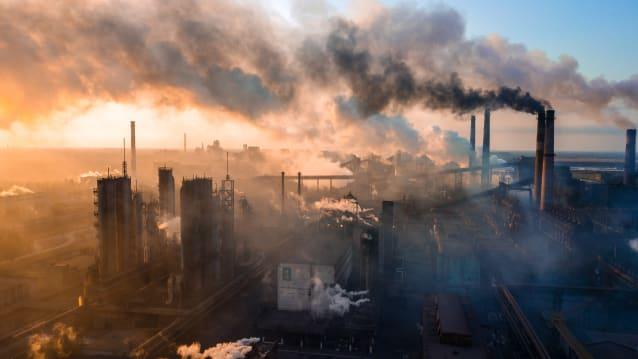 Die Natur nimmt über 50 Prozent des vom Menschen ausgestossenen CO2 wieder auf. Bild: Shutterstock