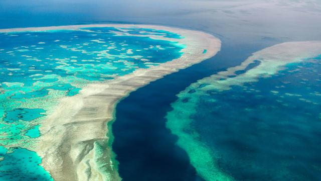 Great Barrier Reef - gefährdetes Naturparadies? Bild: Shutterstock