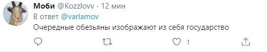 «Доигрались»: хейтеры отметили арест Ильи Варламова иПетра Верзилова