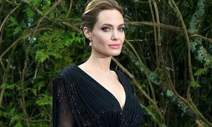 Анджелина Джоли высказалась о том, почему у нее нет мужчины