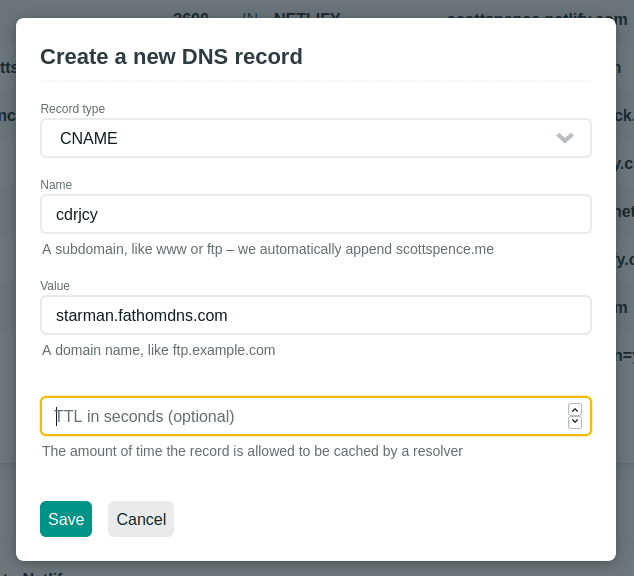 create new dns record netlify