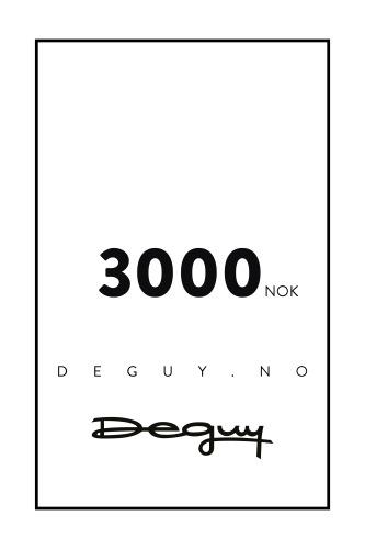 GAVEKORT 3000