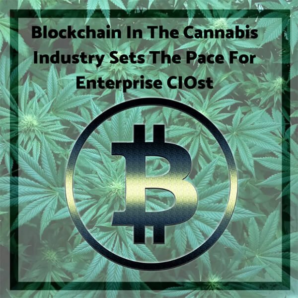 Blockchain In The Cannabis Industry Sets The Pace For Enterprise CIOs