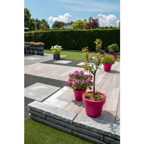 Panther Garden & Living - Granit Rand-/Leistensteine Vicenza hellgrau gespitzt 1063574