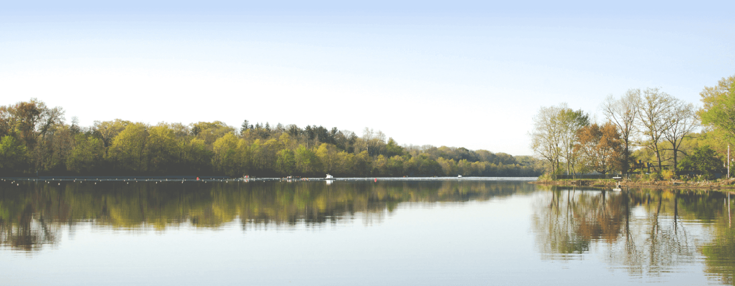 A calm lake with nice trees and peaceful water