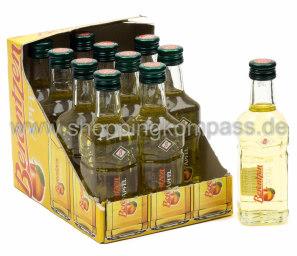 Berentzen Apfelkorn Karton 12 x 0,1 l