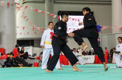 2019 Spencak Silat World Championship