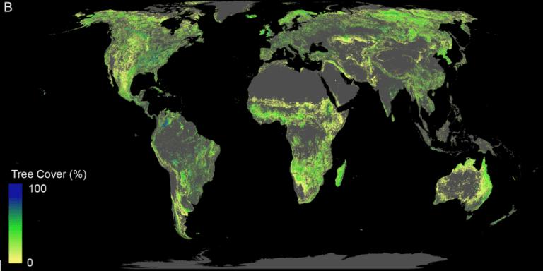 Weltkarte mit vielen fÜr Aufforstung geeignete Flächen