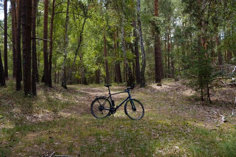 Leichtes Rad im Wald