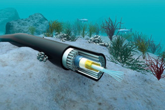 Asia-Pacific Gateway submarine cable problem fixed