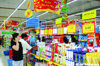Thanh Hoa model promotes sale of Vietnamese goods