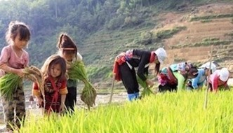 Ho Chi Minh City seminar seeks to reduce child labour