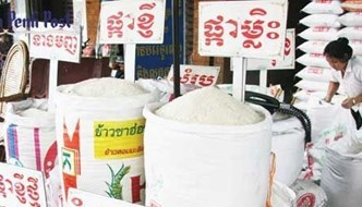 Cambodia's rice exports drop in first nine months of 2018