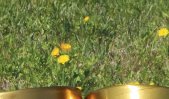 Blue Bell announces return of Peaches and Homemade Vanilla ice cream