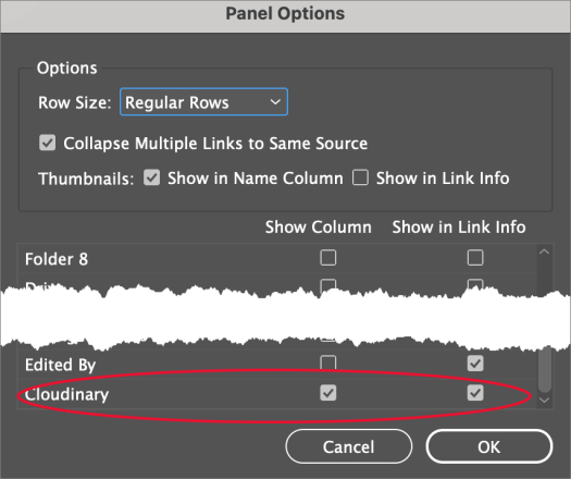 InDesign Link Panel Options
