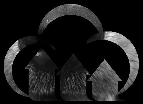 Grayscale logo