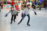 Ice skating with lvis bounding boxes