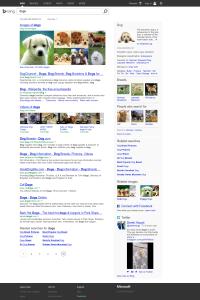 URL2PNG screenshot of Bind