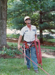 Hiring Tree Trimmers