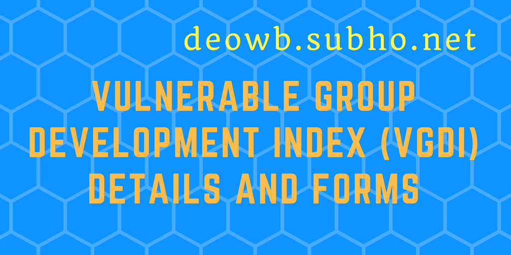 Vulnerable Group Development Index (VGDI)