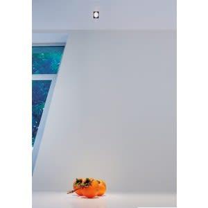 Mini Punto PL-Spot Light-Davide Groppi-Design Davide Groppi