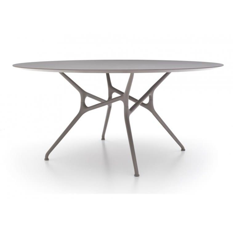 branch table tavolo cappellini legno