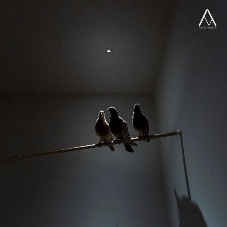 Davide Groppi Nulla Ceiling Lamp