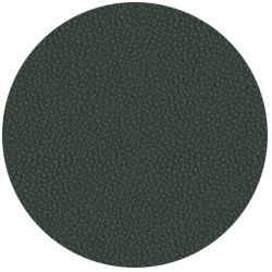 leather_premium_jade_59_ - +679,16US$