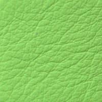 SC190 Mela Verde