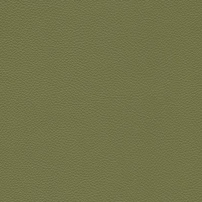 175 bengali green