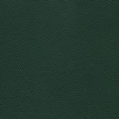 187 selva