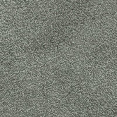 Cloister Grey