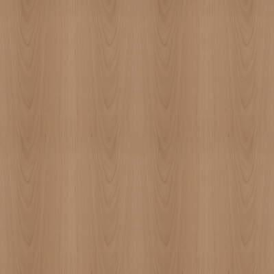Beech wood 91