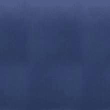 Blue Shanghai Ash
