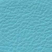 SC123 Polinesia
