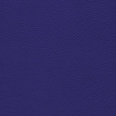 248 iris