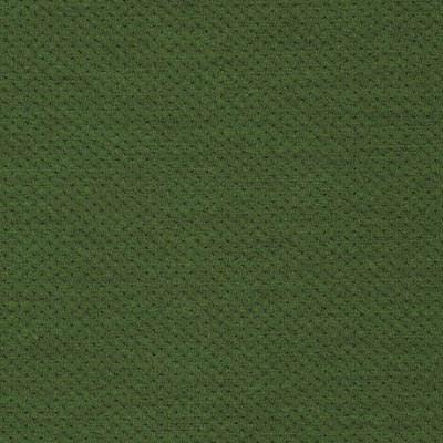 13O621 PITCH GRASS