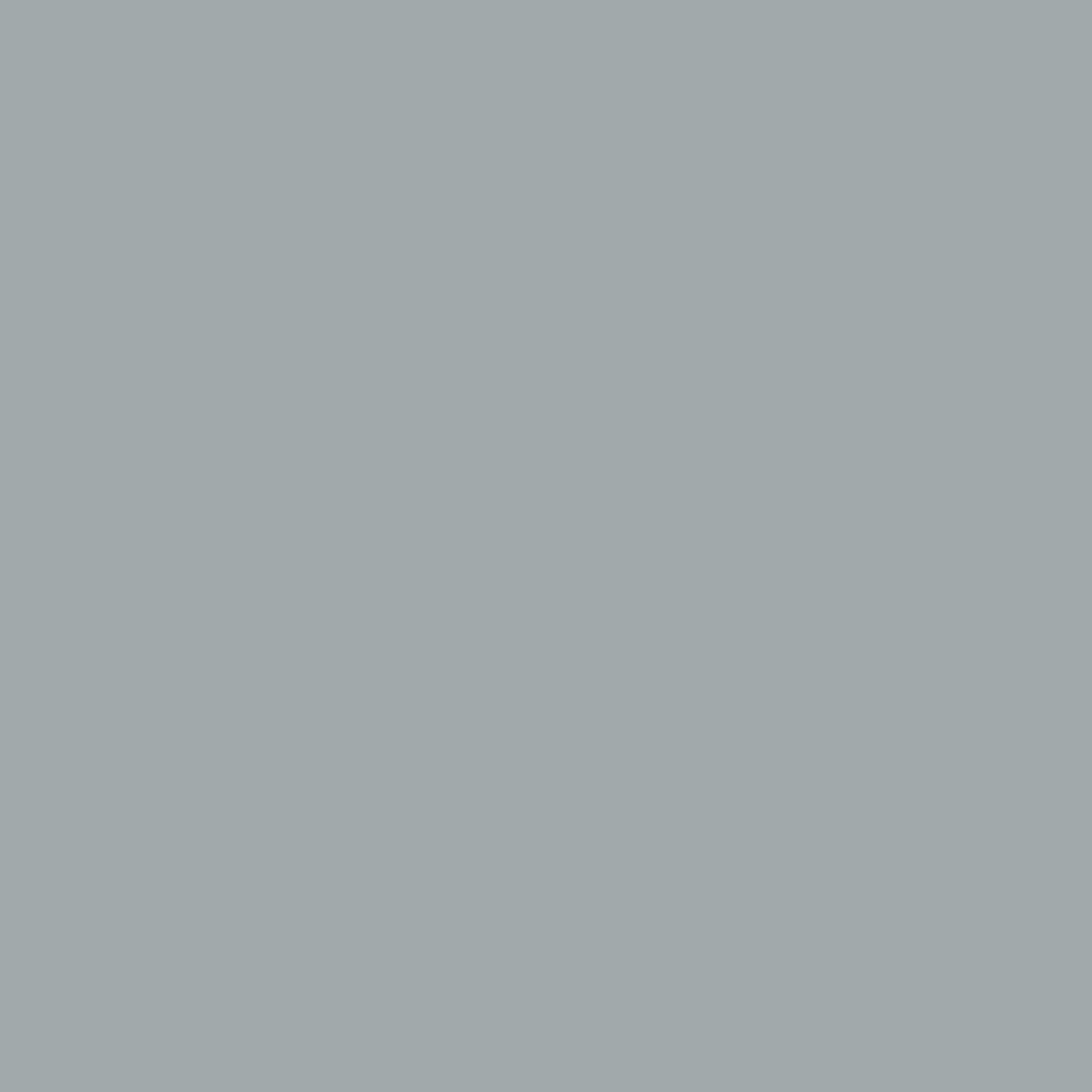 Pearl grey 01011