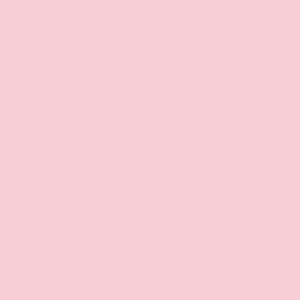 Rosa 01008