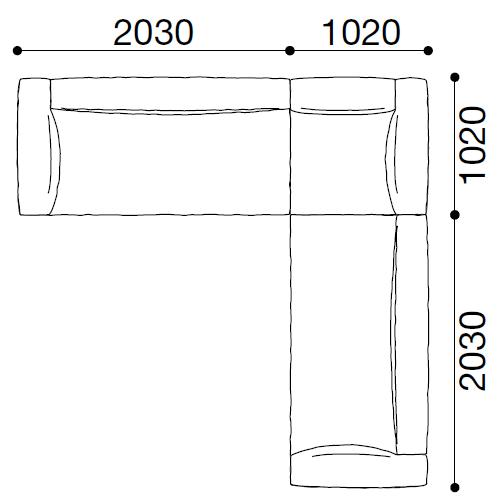 DUP19