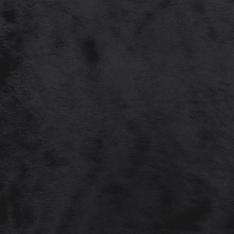 Black Hairskin