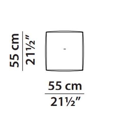 55 x 55