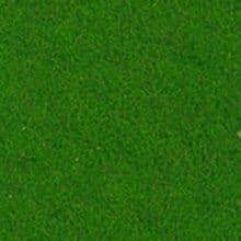 Felt green cod. 1710