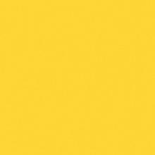 4GI Yellow