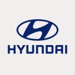 Hyundai Asia Resource Inc.