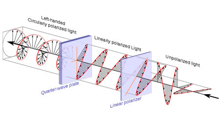 Polarization of light waveforms