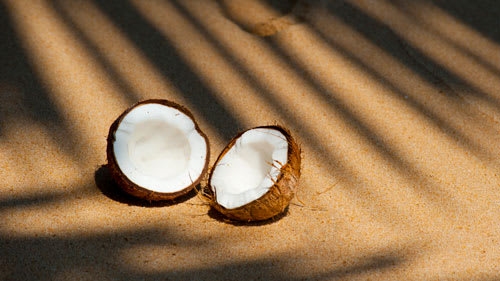 Coconuts split up in sunshine