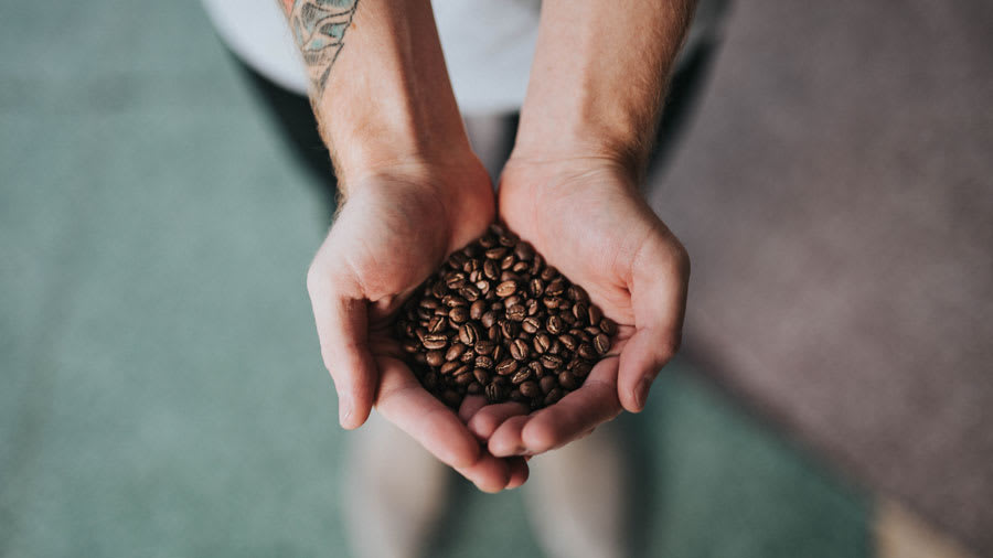 Coffee beans shown in the palms of two hands