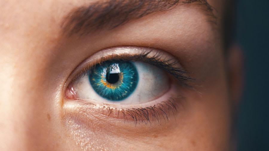 Blue eye and eyelashes closeup