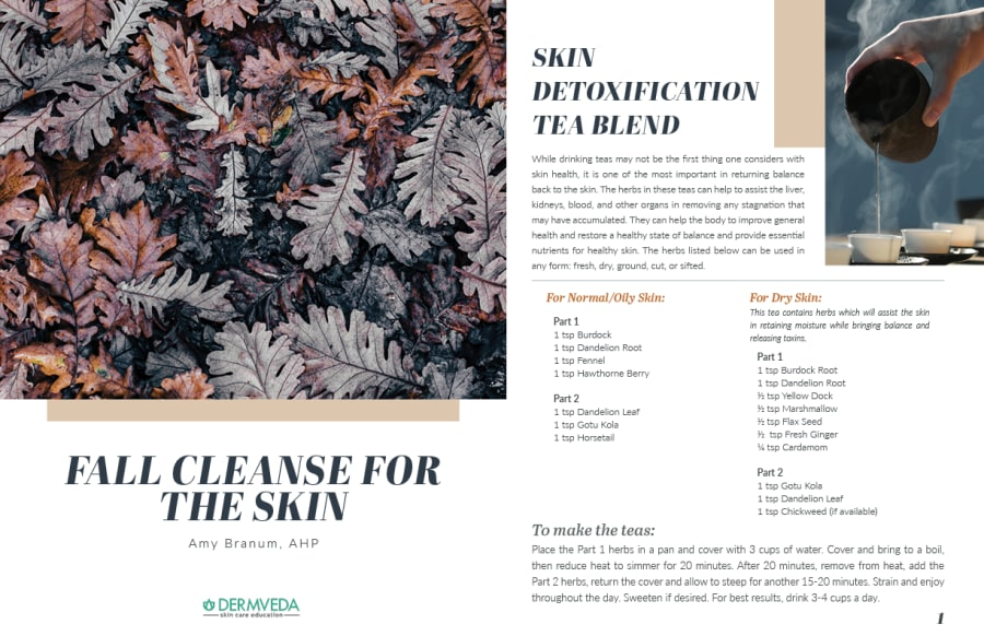 Fall Cleanse for the Skin ebook preview